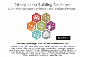 Applying Resilience Webinar