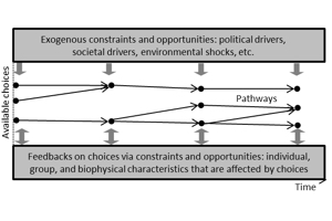 Resilience as pathway diversity: linking systems, individual, and temporal perspectives on resilience
