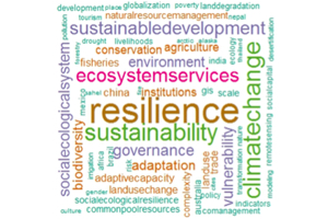 Which methods to use for social-ecological systems (SES) research?